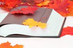 Libro aperto con le foglie di acero Fotografia Stock Libera da Diritti