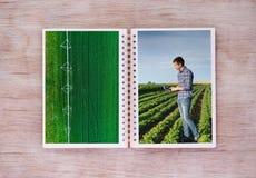 Libro aperto con le scene agricole Fotografia Stock Libera da Diritti