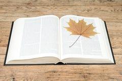 Libro aperto con una foglia Fotografia Stock
