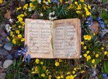 Libro aperto del diario della strega con la lista delle erbe e dei fiori di guarigione immagini stock