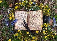 Libro aperto della strega con i simboli mistici, candele nere in fiori fotografie stock libere da diritti