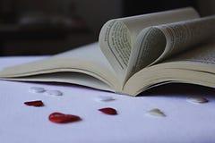 Libro bello Fotografia Stock Libera da Diritti