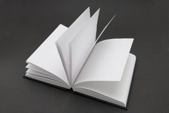 Libro in bianco Immagini Stock