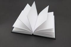 Libro in bianco Fotografia Stock Libera da Diritti