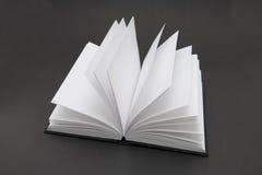 Libro in bianco Immagini Stock Libere da Diritti