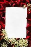 Libro Bianco sopra le rose Immagini Stock Libere da Diritti