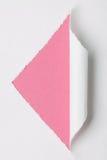 Libro Bianco strappato Fotografia Stock