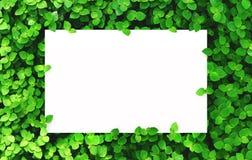 Libro Blanco en fondo verde de la hoja con el espacio libre de centro para el texto o el producto del montaje Imagen de archivo libre de regalías