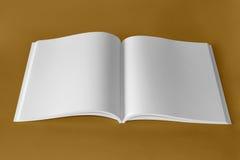 Libro blanco puro Imagen de archivo libre de regalías