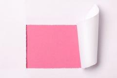 Libro Blanco rasgado Imágenes de archivo libres de regalías