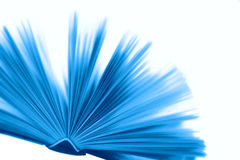 Libro blu Immagine Stock