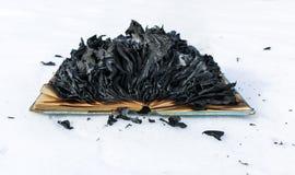 Libro bruciante in neve pagine con il testo nell'ustione del libro aperto con la fiamma luminosa fotografia stock