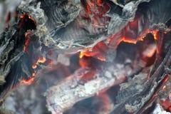 Libro bruciato Fotografie Stock Libere da Diritti