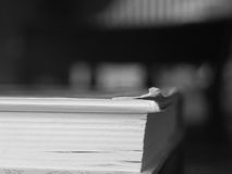 Libro che si siede su una Tabella Fotografie Stock Libere da Diritti