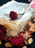 Libro, color de rosa viejos y fuego imagen de archivo libre de regalías