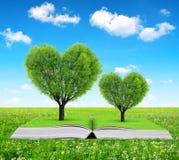 Libro con árboles en la forma del corazón Foto de archivo libre de regalías