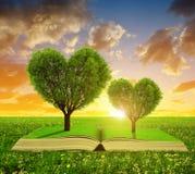 Libro con árboles en la forma del corazón Foto de archivo