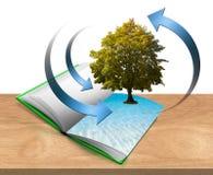 Libro con el árbol y agua Imágenes de archivo libres de regalías