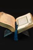 Libro con el grano Imágenes de archivo libres de regalías