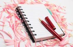 Libro con la penna immagine stock libera da diritti