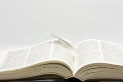 Libro con la piuma Immagine Stock
