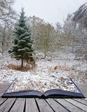 Libro creativo di magia di paesaggio di inverno di concetto Fotografie Stock Libere da Diritti