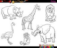 Libro da colorare animale dei caratteri del fumetto di safari Fotografia Stock
