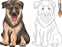 Libro da colorare del pastore del cucciolo Fotografia Stock Libera da Diritti