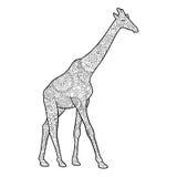 Libro da colorare della giraffa per il vettore degli adulti Fotografia Stock Libera da Diritti