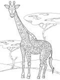 Libro da colorare della giraffa per il vettore degli adulti Fotografie Stock