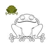 Libro da colorare della rana Rettile anfibio divertente Animale dalla palude Fotografie Stock