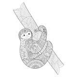 Libro da colorare di bradipo per il vettore degli adulti Fotografia Stock