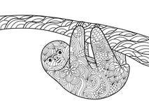 Libro da colorare di bradipo per il vettore degli adulti Immagine Stock