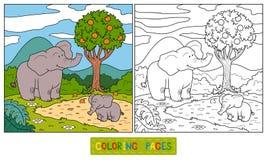 Libro da colorare (elefante) Immagine Stock Libera da Diritti
