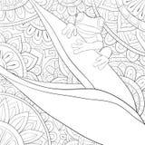 Libro de colorear adulto, página una rana linda en la planta en el fondo abstracto con la imagen de los ornamentos para relajarse libre illustration