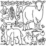 Libro de colorear, animales del campo de la historieta Foto de archivo