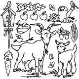 Libro de colorear, animales del campo de la historieta Foto de archivo libre de regalías