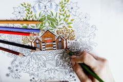 Libro de colorear antiesfuerzo en el proceso del dibujo Imágenes de archivo libres de regalías