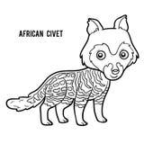 Libro de colorear, civeta africana Fotografía de archivo libre de regalías