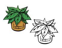 Libro de colorear del helecho de la planta Imagen de archivo libre de regalías