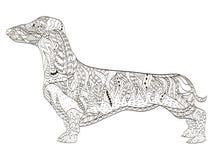 Libro de colorear del perro basset para el vector de los adultos Fotos de archivo