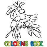 Libro de colorear o imagen del colorante del loro divertido Foto de archivo libre de regalías