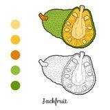 Libro de colorear para los niños: frutas y verduras (jackfruit) ilustración del vector