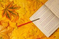 Libro de ejercicio de escuela vieja con una pluma de madera de la tinta en un fondo de hojas de arce amarillas Un libro de ejerci Fotos de archivo libres de regalías