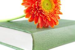 Libro de la flor Imagenes de archivo