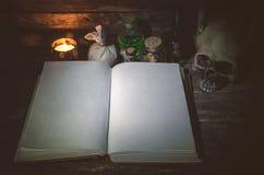 Libro de la magia fotografía de archivo libre de regalías