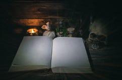 Libro de la magia fotos de archivo libres de regalías