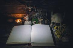 Libro de la magia imagen de archivo