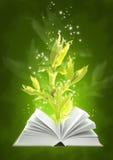 Libro de la magia de tierra