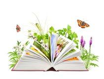 Libro de la naturaleza Imagen de archivo